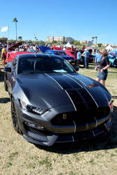 2016 Shelby
