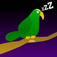 A simple parrot by se7enes