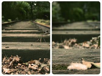 Autumn by Snoodle