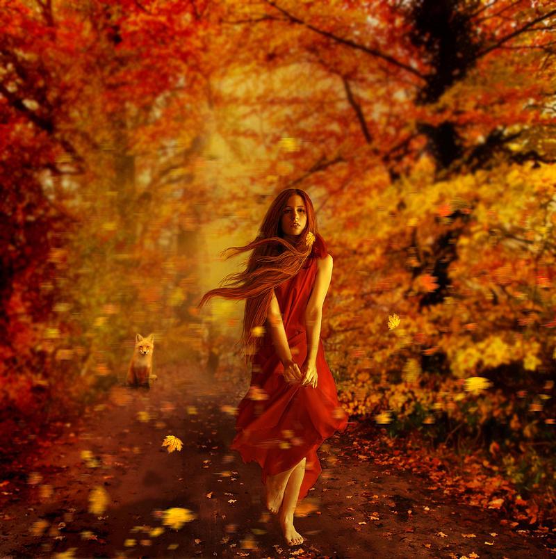 Za poeziju - Page 4 Autumn_by_kokoszkaa