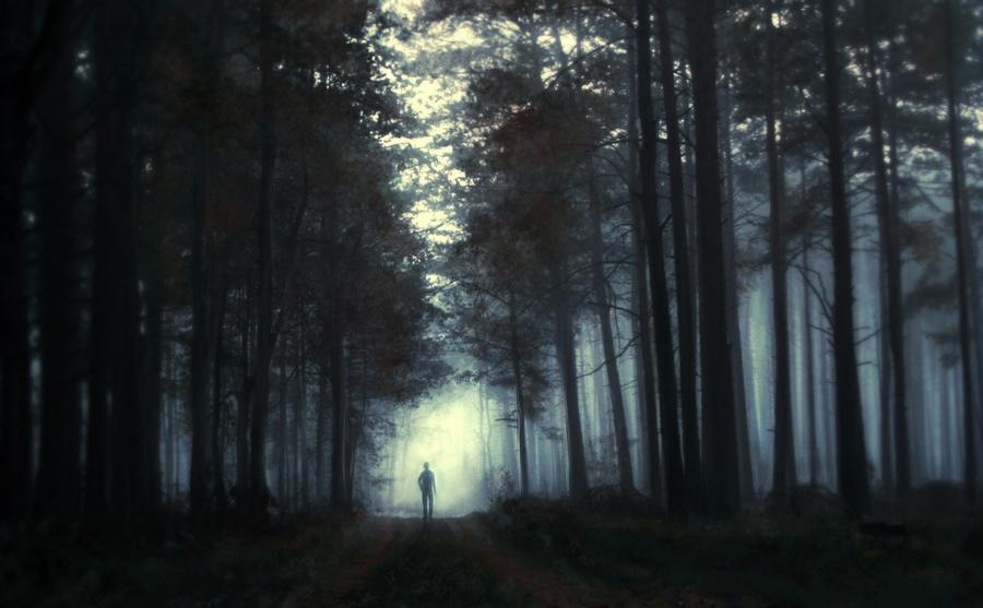 ...dark forest... by BaxiaArt