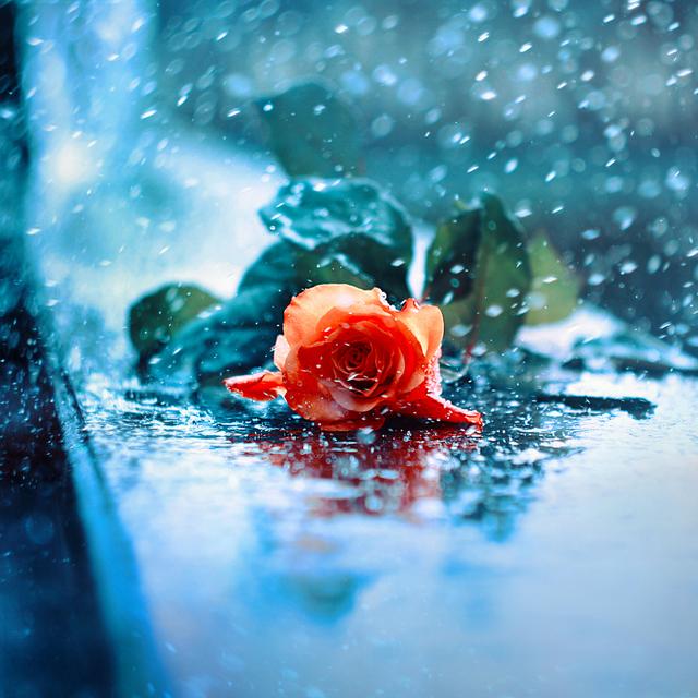 rain... by BaxiaArt