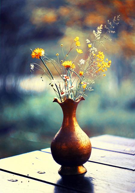 flowers by BaxiaArt