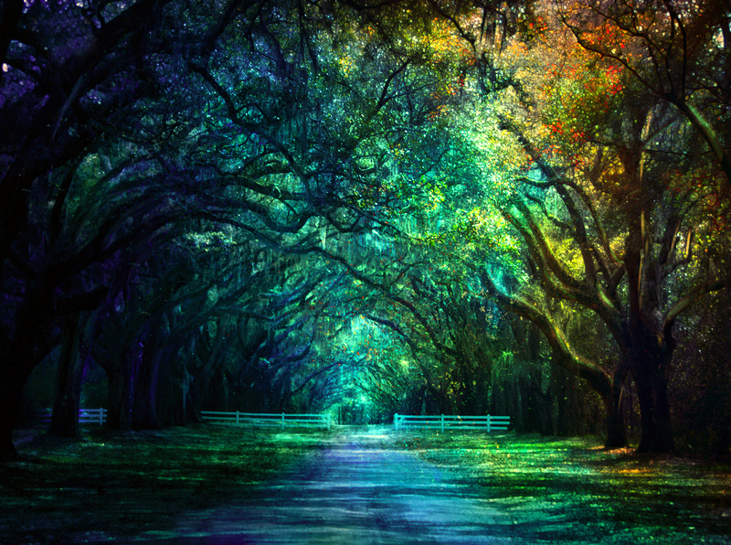 magical place by BaxiaArt on DeviantArt