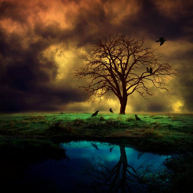 dark soul by BaxiaArt
