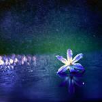 rain by BaxiaArt