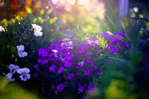 garden by BaxiaArt