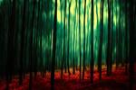 dark forest II by BaxiaArt