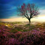 Dream 2 by BaxiaArt
