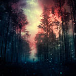magical forest III