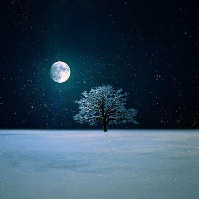 Winter Night Live Wallpaper by BaxiaArt