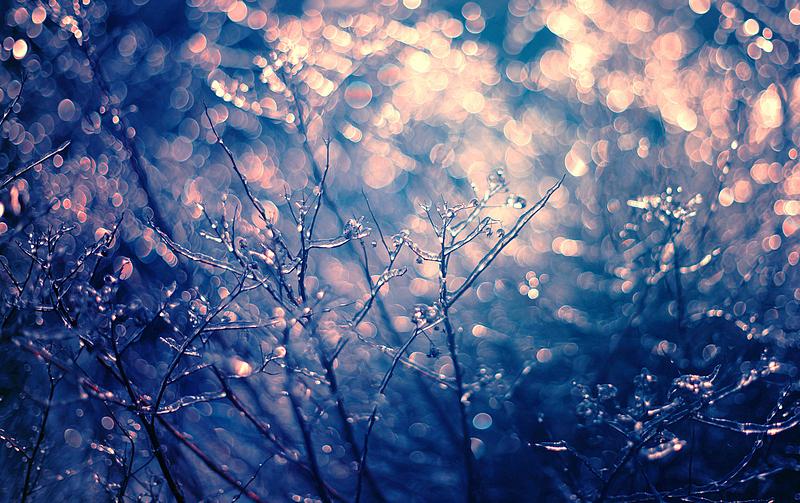 morning glow II by BaxiaArt