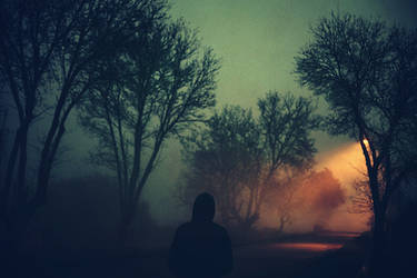 The Fog by BaxiaArt