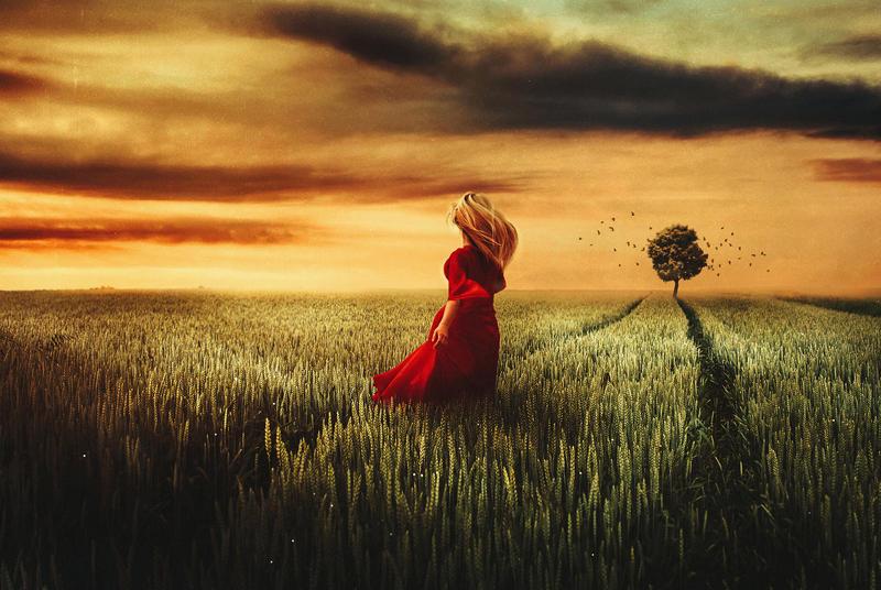 Field of dreams by BaxiaArt