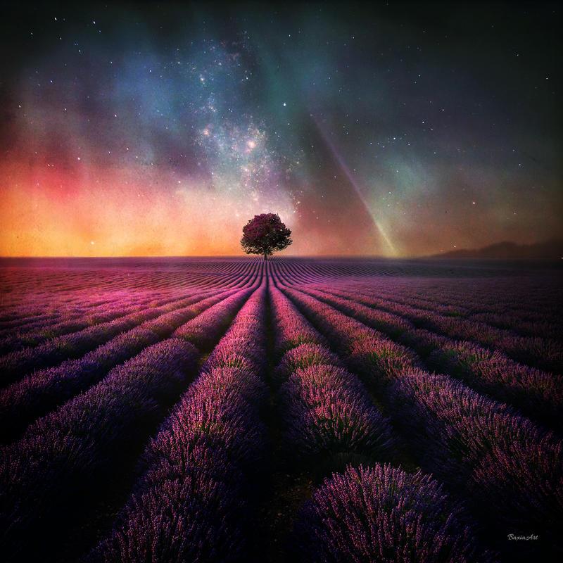 Deviant - art : une source d'inspiration pour nos univers ? - Page 2 Magic_tree_by_baxiaart_de5v354-fullview.jpg?token=eyJ0eXAiOiJKV1QiLCJhbGciOiJIUzI1NiJ9.eyJzdWIiOiJ1cm46YXBwOjdlMGQxODg5ODIyNjQzNzNhNWYwZDQxNWVhMGQyNmUwIiwiaXNzIjoidXJuOmFwcDo3ZTBkMTg4OTgyMjY0MzczYTVmMGQ0MTVlYTBkMjZlMCIsIm9iaiI6W1t7ImhlaWdodCI6Ijw9ODAwIiwicGF0aCI6IlwvZlwvMmJiMGI2ZTItNDk3NC00ZGFhLWJlNDItYWFlMDgyMzBiMTVlXC9kZTV2MzU0LTk2YTY5YjExLTMzNzMtNDk5Mi1iM2M2LWQ4N2UxMDc0NzlkZS5qcGciLCJ3aWR0aCI6Ijw9ODAwIn1dXSwiYXVkIjpbInVybjpzZXJ2aWNlOmltYWdlLm9wZXJhdGlvbnMiXX0