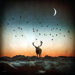 Deer by BaxiaArt