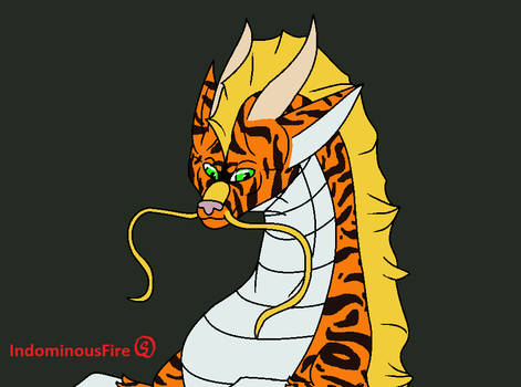 Whiskered Tiger Dragon