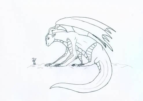 Stocky Dragon