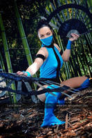 Kitana _ Ultimate Mortal Kombat 3 by LanaMarieLive