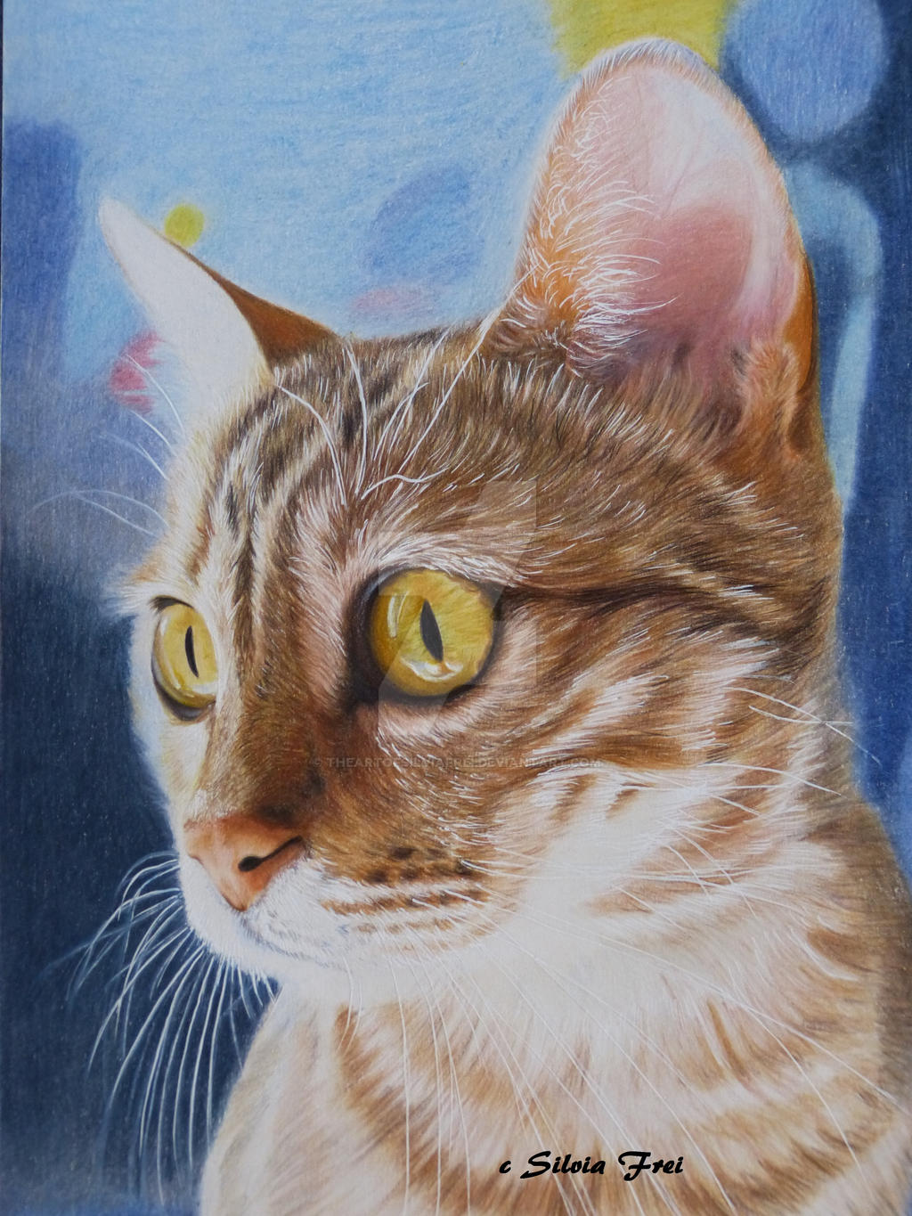 bengal cat colored pencil drawing by theartofsilviafrei on