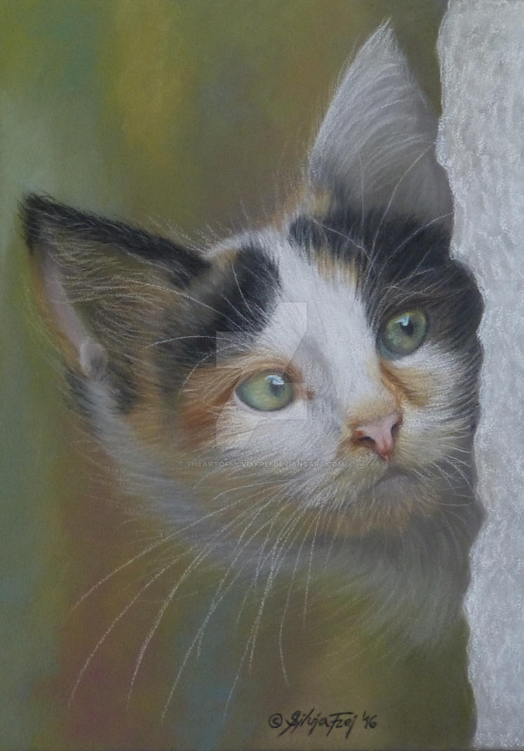 Kitten - Pastel Painting by theArtofsilviafrei