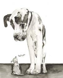 Funny dogs by Shivarou