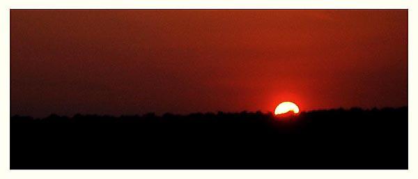 Sunset by jimmykullu