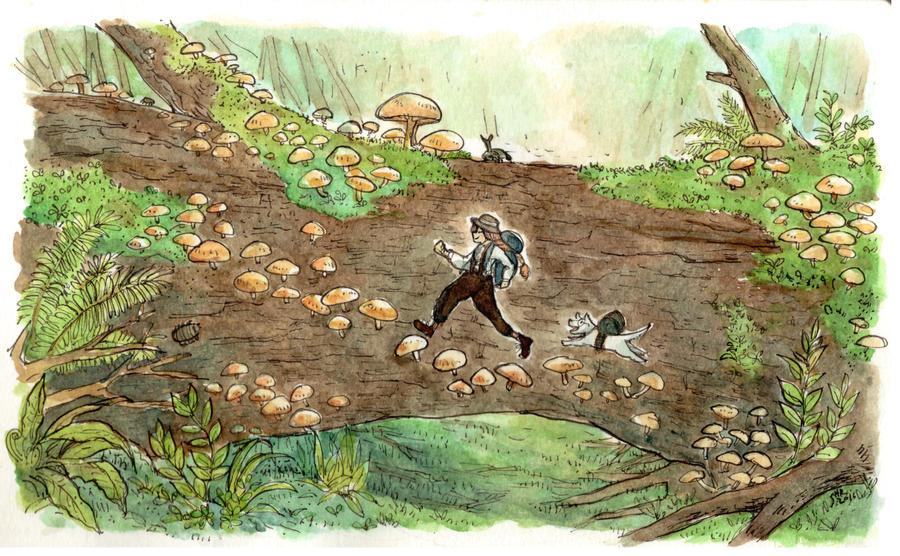 A Mushroom Journey by sherrae78