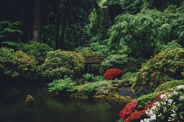 Japanese Garden by MythicalWolf76