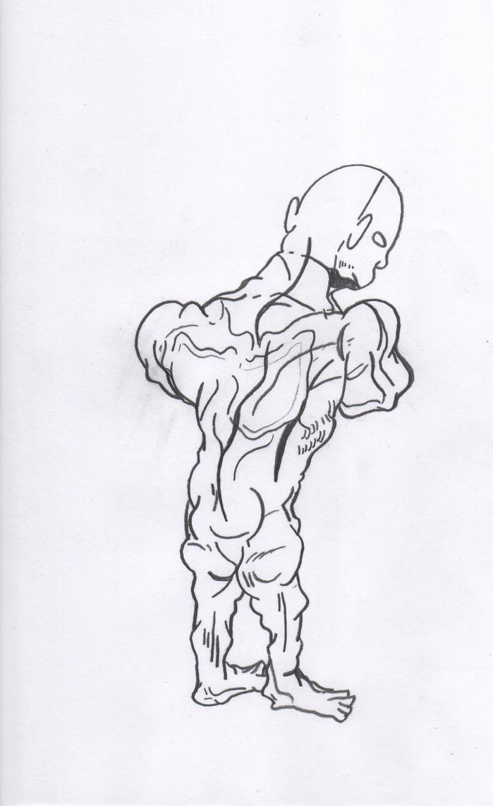 Anatomy by Designgraphicboy