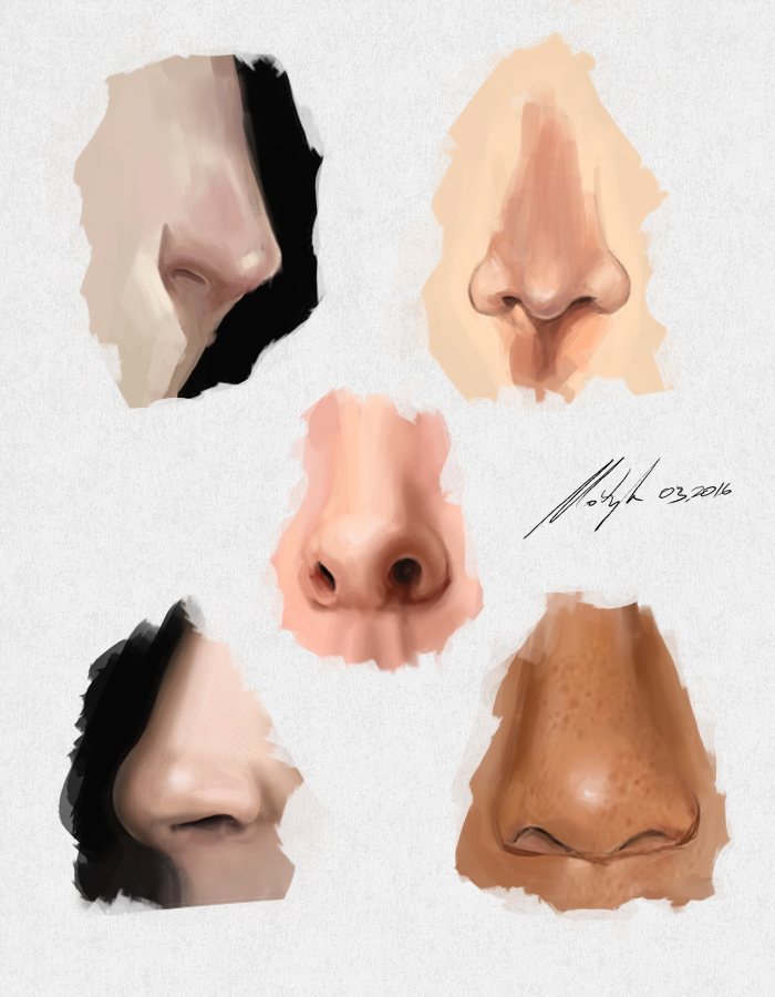 human nose study by michalmotyka