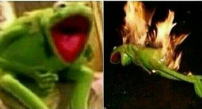 Kermit in fire... by Jos3lol