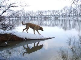 River Ranger by Socrahcat