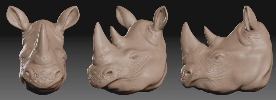ZBrush Rhino Bust by Eowynu