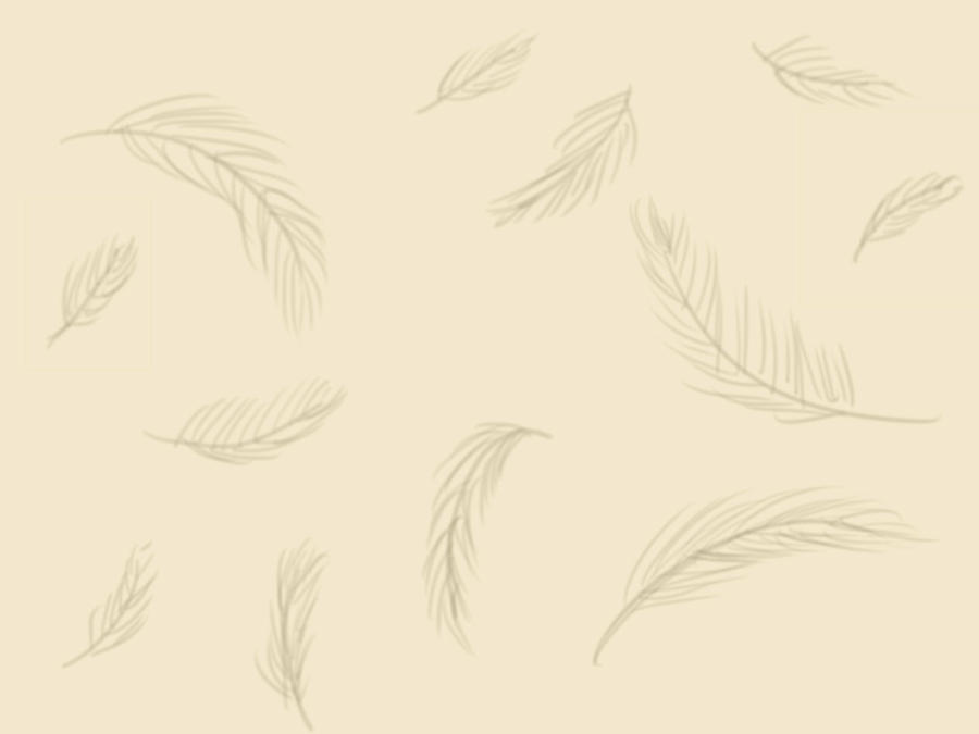 The gallery for --> Feather Backgrounds Tumblr