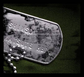 Dogtag ID by bagienny