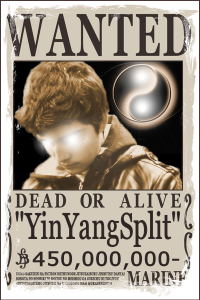 YinYangSplit's Profile Picture
