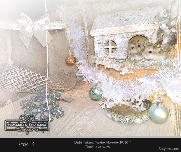 Hello // Hamsters house Winter Edition by Deux-re-Saiyaru