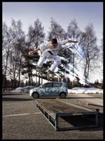 Skateboarding - leslie by TwiCeArts