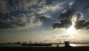 IMG 44 - Rotterdam's harbor