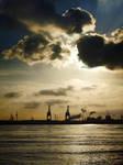 IMG 45 - Rotterdam's harbor 2
