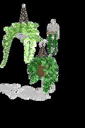 Plants by snowcherryloveheart