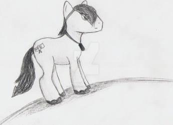 Flaggy the Flag Pony