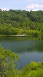 Zoo Lake by axiom463