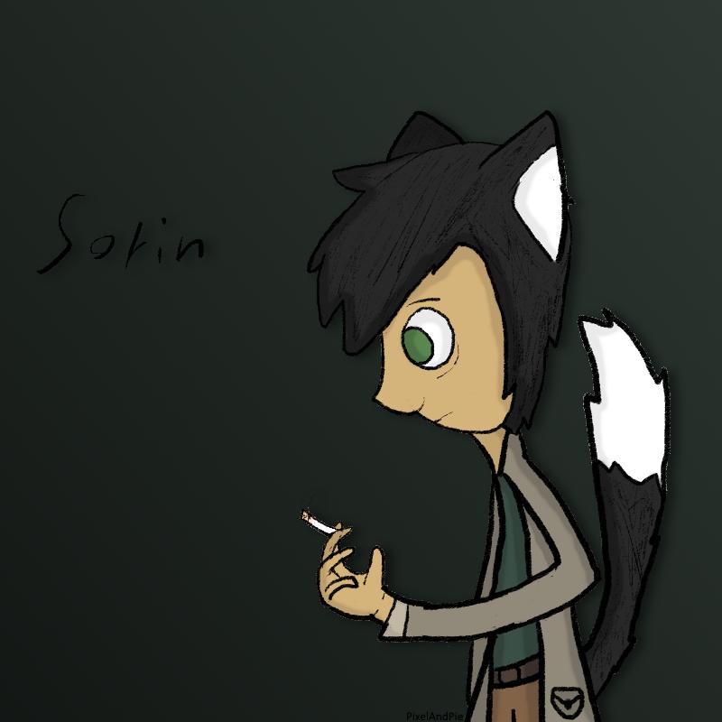 Sorin [OC] by PixelAndPie