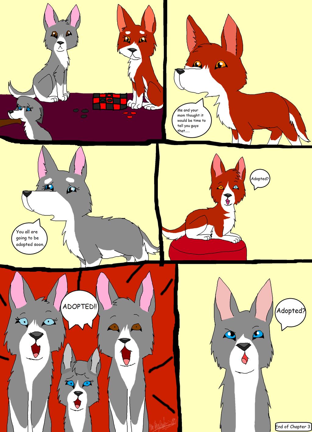 Alpha Dog Food Ingredients