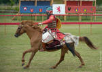 Ghulam horseman 2