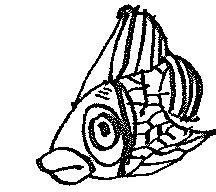 Magi The Karp by Steamland