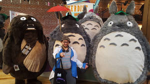My Doctor Totoro by skysoul25