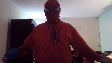 2019 Spider-versing by skysoul25